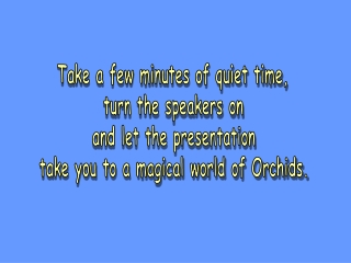 Take a few minutes of quiet time, turn the speakers on and let the presentation