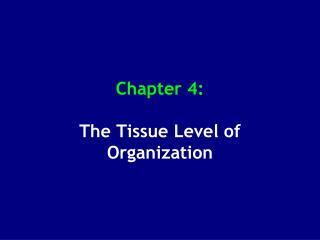 Chapter 4: The Tissue Level of Organization
