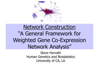 "Network Construction ""A General Framework for Weighted Gene Co-Expression Network Analysis"""