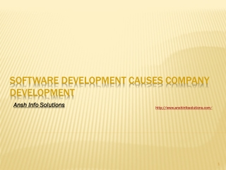 Software Development Causes Company Development