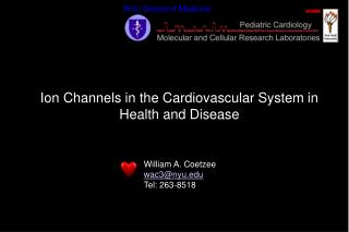 Ion Channels in the Cardiovascular System in Health and Disease