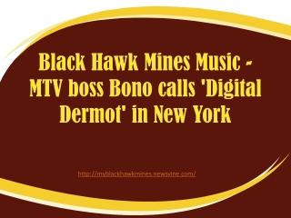MTV boss Bono calls 'Digital Dermot' in New York by Black Ha