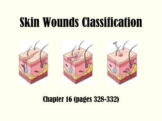 Skin Wounds Classification
