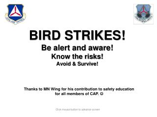 BIRD STRIKES! Be alert and aware! Know the risks! Avoid & Survive!