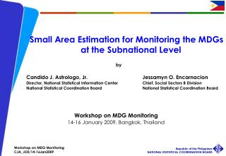Small Area Estimation for Monitoring the MDGs at the Subnational Level