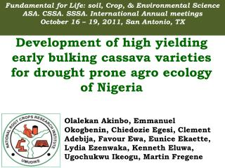 Development of high yielding early bulking cassava varieties for drought prone agro ecology of Nigeria