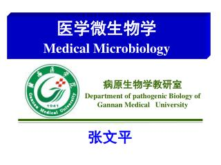 Department of pathogenic Biology of Gannan Medical   University
