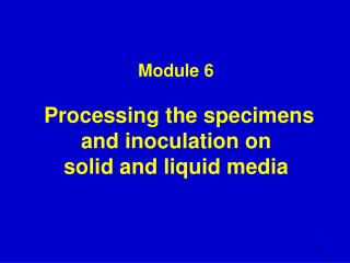 Module 6   Processing the specimens and inoculation on  solid and liquid media