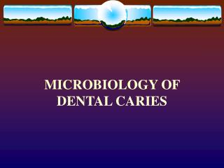 MICROBIOLOGY OF DENTAL CARIES