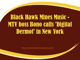 MTV boss Bono calls 'Digital Dermot' in New York by Black Ha