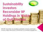 Sustainability Investors Reconsider BP Holdings in Wake of G