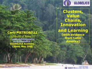 Clusters, Value Chains, Innovation and Learning ( with evidence from Latin America)
