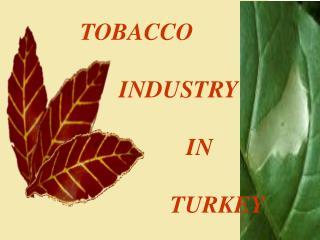 TOBACCO INDUSTRY IN TURKEY