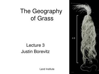 The Geography  of Grass