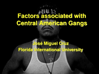 Factors associated with Central American Gangs