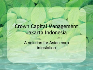 Crown Capital Management Jakarta Indonesia - A solution for