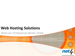 Web Hosting Solutions-Build your Professional Identity Onlin