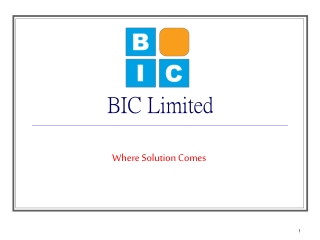 BIC Limited