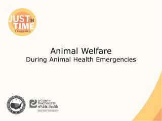 Animal Welfare  During Animal Health Emergencies