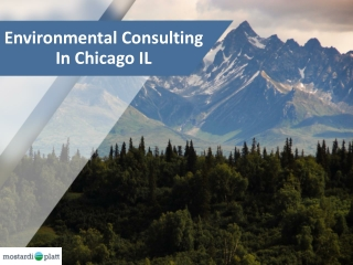 Environmental Consulting In Chicago IL