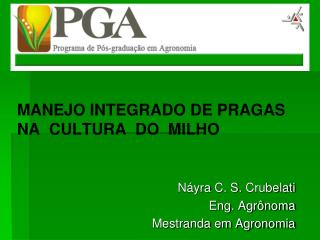 MANEJO INTEGRADO DE PRAGAS NA  CULTURA  DO  MILHO Náyra  C. S.  Crubelati Eng. Agrônoma Mestranda em Agronomia