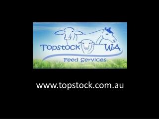 Topstock WA Fedd Services
