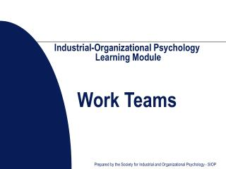 Industrial-Organizational Psychology  Learning Module    Work Teams