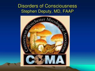 Disorders of Consciousness Stephen Deputy, MD, FAAP