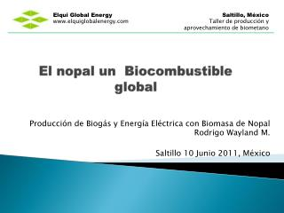 El nopal un  Biocombustible global