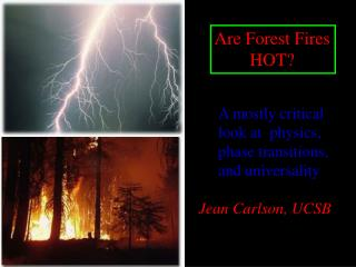 Are Forest Fires         HOT?