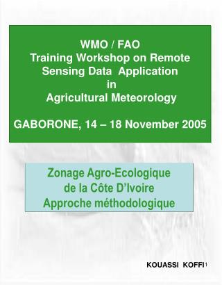 WMO / FAO  Training Workshop on Remote Sensing Data  Application  in  Agricultural Meteorology GABORONE, 14 – 18 Novem