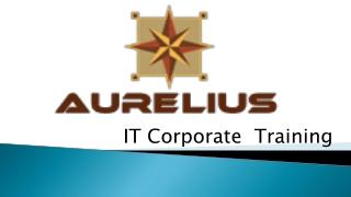 IT corporatet training