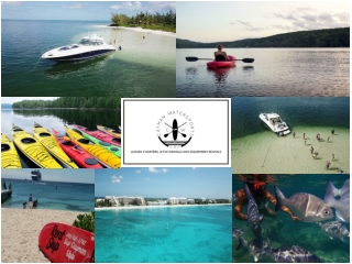 Explore the Caribbean Sea Up, Close & Personal. Rent a Paddle Board