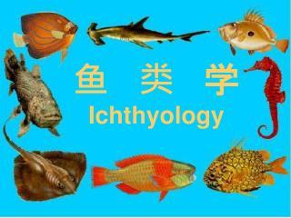 鱼 类 学 Ichthyology