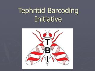 Tephritid Barcoding Initiative