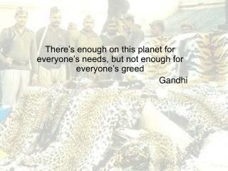 There's enough on this planet for everyone's needs, but not enough for everyone's greed Gandhi