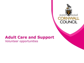 Adult Care and Support Volunteer opportunities