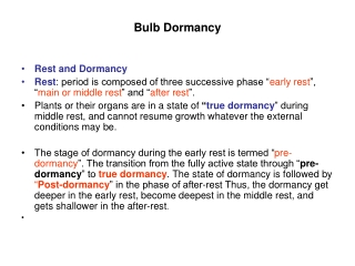Bulb Dormancy