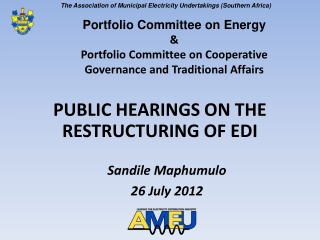 PUBLIC HEARINGS ON THE RESTRUCTURING OF EDI