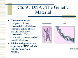 Ch. 9 : DNA : The Genetic Material