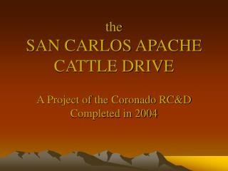 The  SAN CARLOS APACHE CATTLE DRIVE  A Project of the Coronado RCD  Completed in 2004