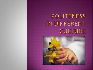 Politeness  in Different Culture