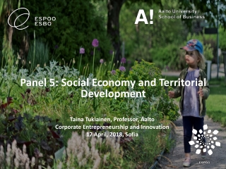 Panel 5: Social Economy and Territorial D evelopment