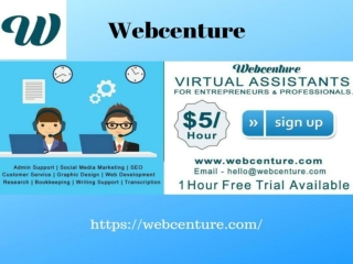 Ecommerce Virtual Assistant - Webcenture