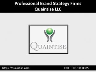 Professional Brand Strategy Firms - Quaintise LLC