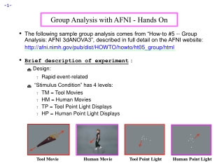 Group Analysis with AFNI - Hands On