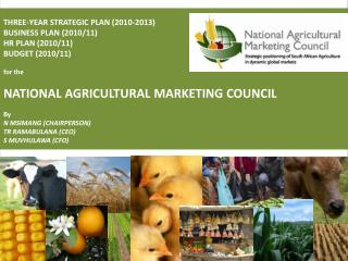 THREE-YEAR STRATEGIC PLAN (2010-2013) BUSINESS PLAN (2010/11) HR PLAN (2010/11) BUDGET (2010/11) for the  NATIONAL AGRIC