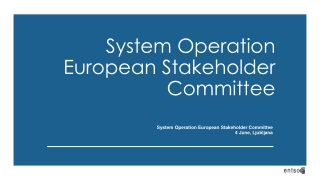 System Operation European Stakeholder Committee