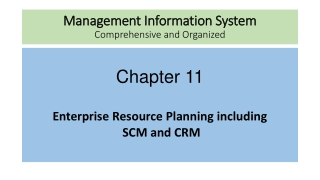 Management Information System Comprehensive and Organized