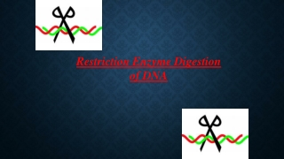 Restriction Enzyme Digestion of DNA